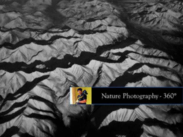 NaturePhotography360.jpg