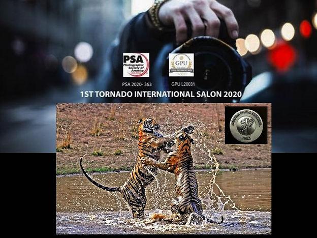 Tornado2020-FIFSilver.jpg