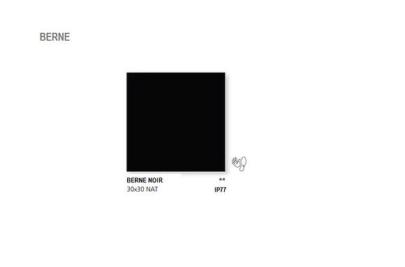 Berne Noir