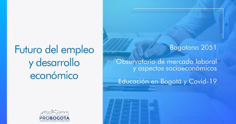 New Presentacion Proyectos Probogota 2021 c_00014.jpg