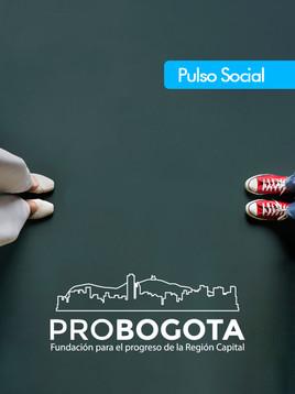Encuesta de Pulso Social Trimestre Nov 2020 - Ene 2021