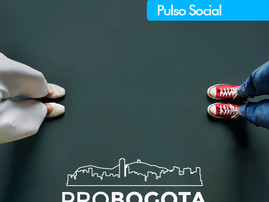 Pulso Social Trimestre Enero - Marzo 2021