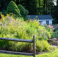Banner picking garden.jpg