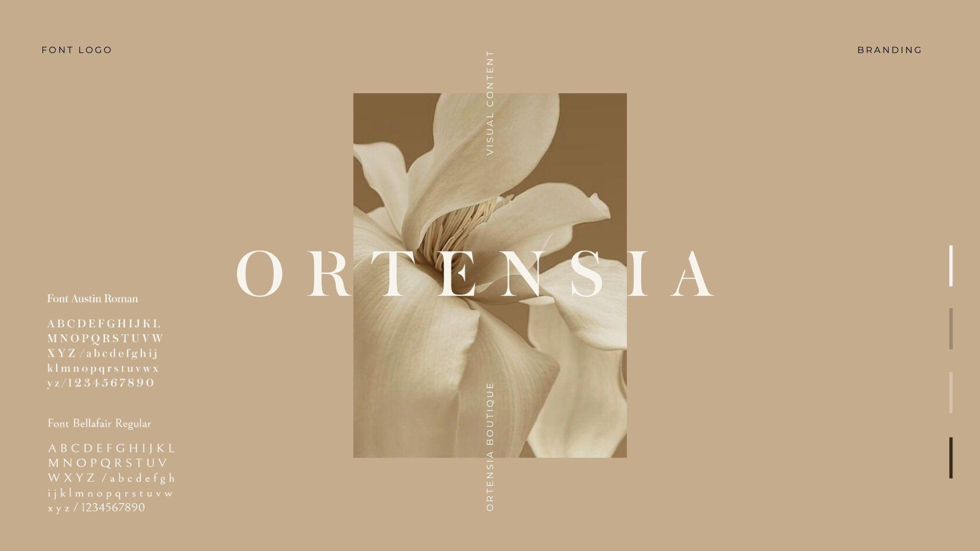 ORTENSIA_FINAL_PRESENTATION.jpg