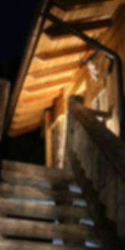 Alm Sauna Treppe web.jpg