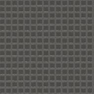Neutral GP006.jpg