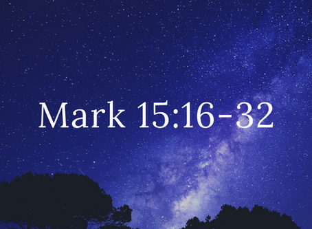 Connect with the Word   July 26, 2020