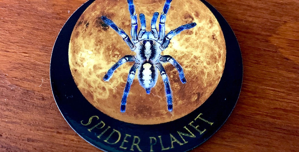 Spider Planet fridge magnet