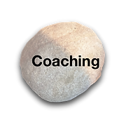 Link to Carolyn Costin's coaching program