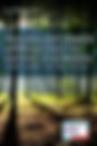 Screen Shot 2018-08-08 at 4.39.47 PM.png