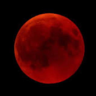 Get Ready for the Super, Blood, Flower Moon Eclipse
