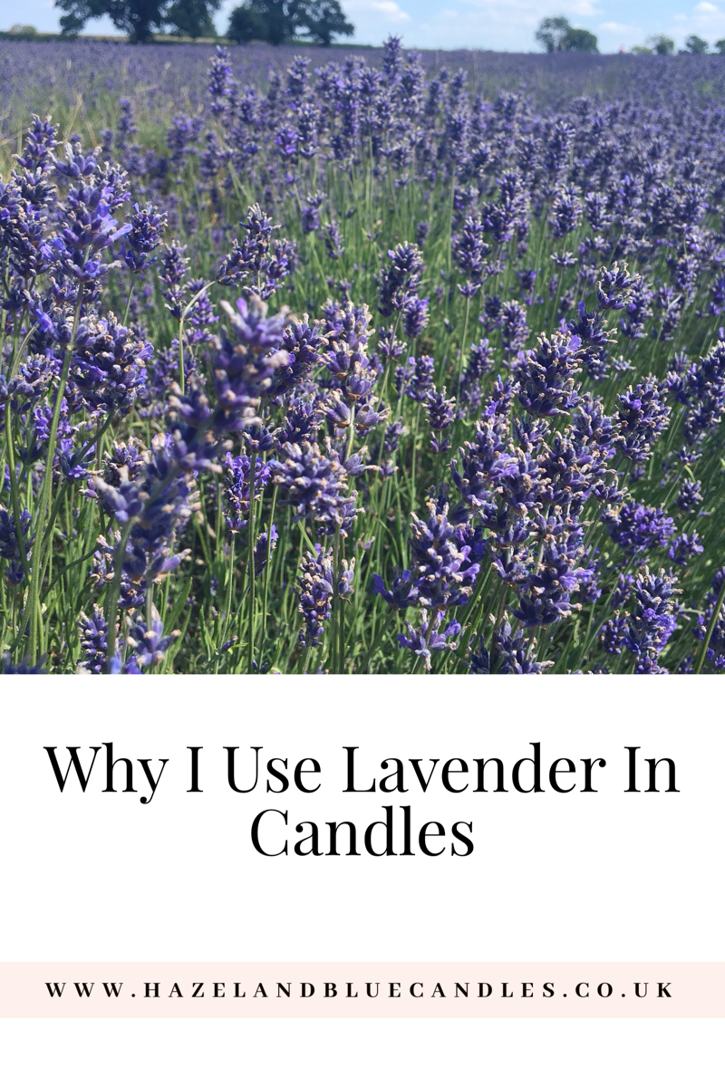 Why I use lavender in candles, lavender candles, handmade soy candles, handmade lavender candles, hazel and blue candles blog post