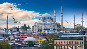 Istanbul_Turkey_Houses_Temples_Birds_Clo