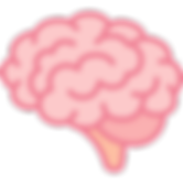 brain website.png