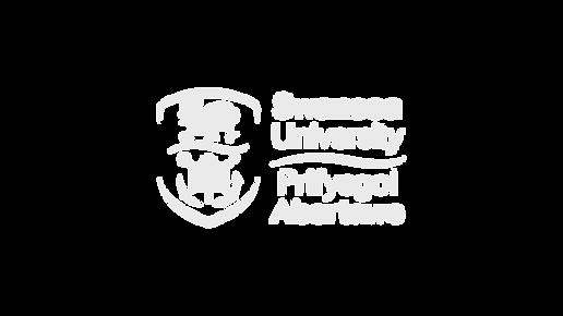 Swansea Uni.png