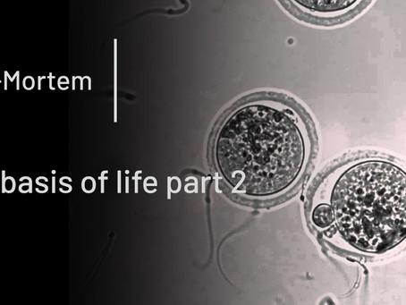 The basis of life part 2 - translation