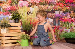 FACEBOOK Flower sales 3