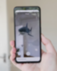 GOOGLE-3D-ANIMALS-Great-White-Shark.png