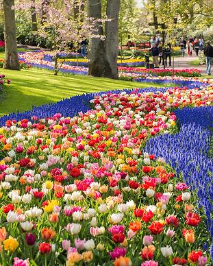 Keukenhof park in Netherlands.jpg