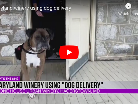 Delivery by dog