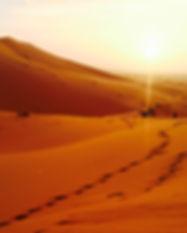 sahara_desert_sunset.jpg