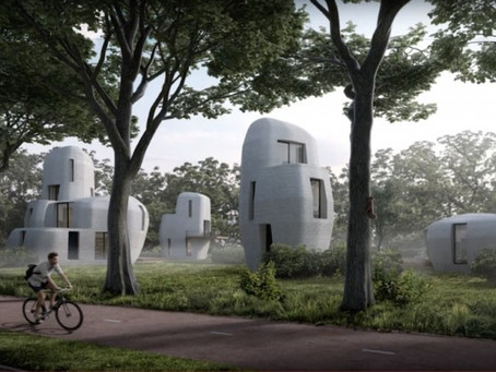 3D printed hemp houses