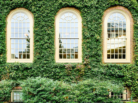 Easier to get into an Ivy