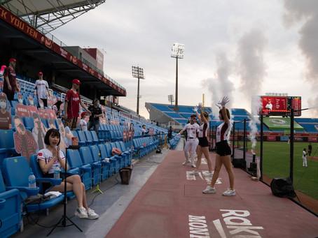 Cardboard baseball fans in Taiwan