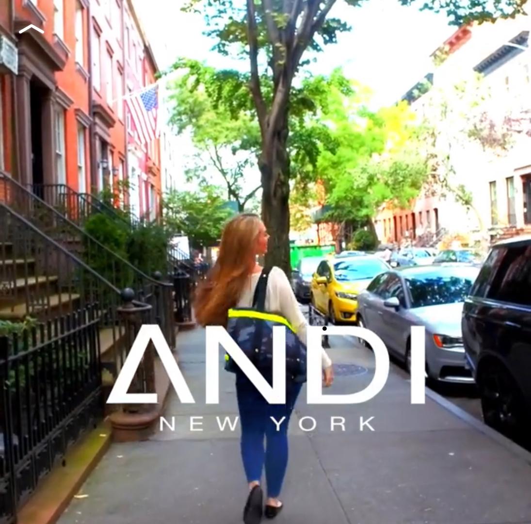 The ANDI Brand