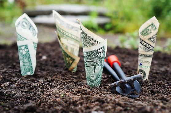 u-s-dollar-bills-pin-down-on-the-ground-