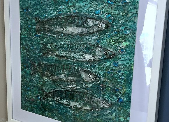 Sold 4 Grumpy Mackerel
