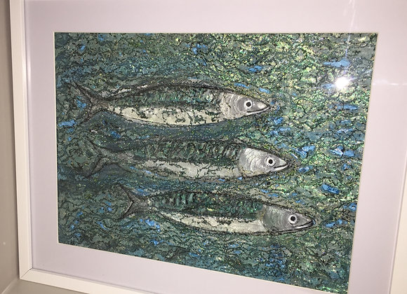 Sold 3 Smiling Mackerel