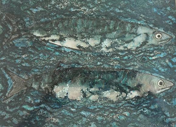 Sold 2 Cornish Mackerel