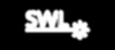 Skinology Logo larg laser-02.png