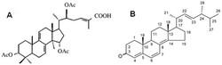 molecular model of KHZ