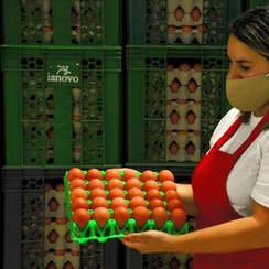 Bandeja de plástico con 30 huevos (a granel)