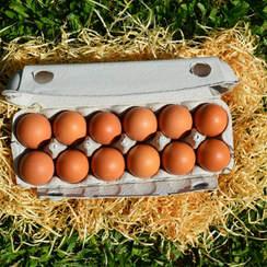 Cajita de celulosa con 12 huevos