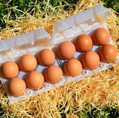 Cajita de pet reciclado 6 x 2 huevos