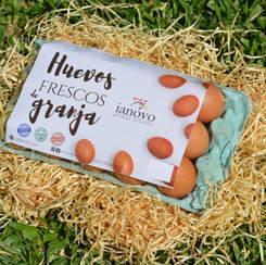 Bandeja de celulosa con 15 huevos