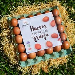 Bandeja de celulosa con 30 huevos