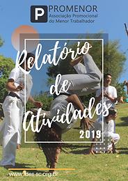 Relatório_Atividades_PROMENOR_2019.png