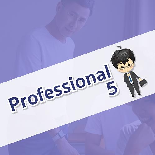 Professional 5