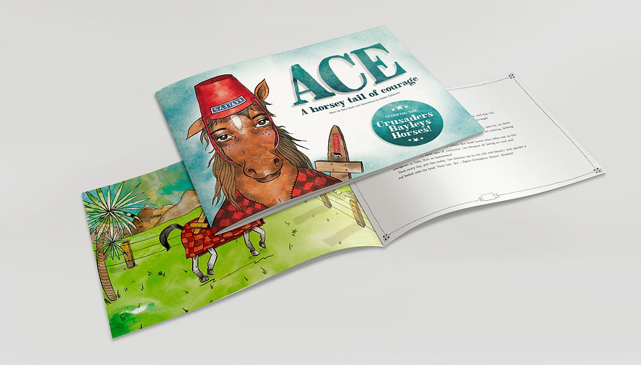 Ace_Front_Cover_Web2_8_1024x1024_2x.jpg