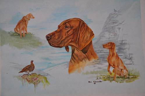 HUNGARIAN VIZSLA IMAGES - Original Painting Acrylic on Board