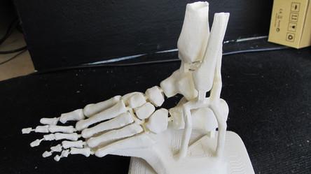 Biotech 3D Printing 2017 (6).jpg