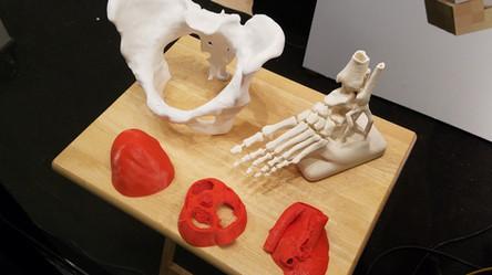 Biotech 3D Printing 2017 (2).jpg