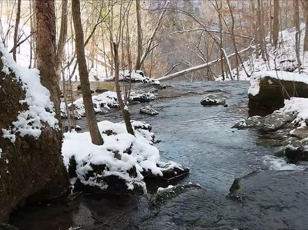minnesota-driftless-trout-stream.jpg