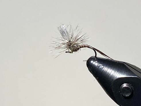 What is an Emerger Fly Pattern? An Illustrated Guide