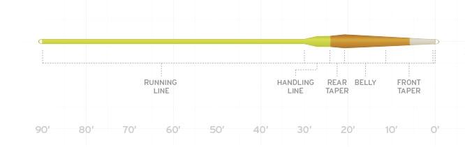 sa-amplitude-creek-trout-fly-line-taper-diagram