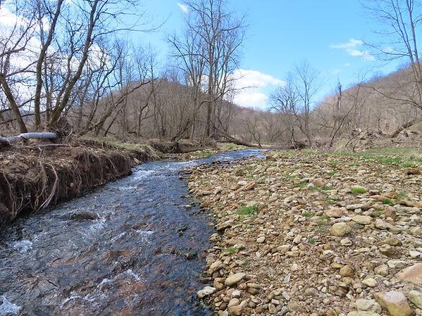 wisconsin-driftless-trout-stream.jpg